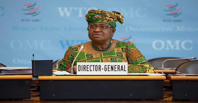 WTO urges countries to strike deal to stop over-fishing by July